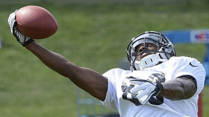 Emmanuel Sanders one hands a pass during Steelers afternoon workouts at training camp at St Vincent College.