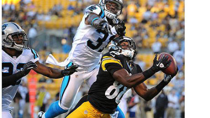 The Steelers' Emmanuel Sanders hauls in pass from quarterback Charlie Batch against the Panthers.