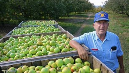 Garry Shanholtz, 70, has been farming on his family?s orchard in Romney, W.Va., his entire life ? and sports Romney-Ryan campaign signs in the yard.