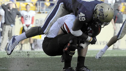 Pitt's Eric Williams sacks Gardner-Webb quarterback Lucas Beatty last Saturday at Heinz Field.