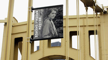 A banner with a photograph of Rachel Carson hangs from supports on the bridge bearing her name across the Allegheny River in 2006.