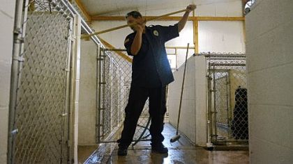 Brian Holzer of Triangle Pet Control Service cleans cages Wednesday at the company's McKees Rocks facility.