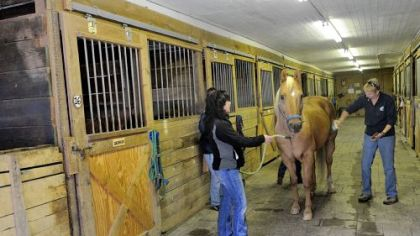 Colleen Hasser, left, holds Jess, a 17-year-old gelding, as Shelly Bates brushes the horse during an open house for Riding for the Handicapped in McCandless.