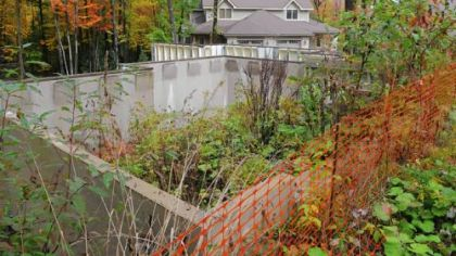 A foundation and concrete walls are overgrown after Greg Mortimer's Timberlake project was shut down.