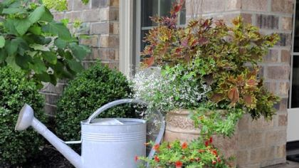 An arrangement of potted plants and a worn watering can provide a point of interest in Rose Romboski's garden.
