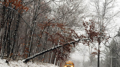 A PennDOT truck waits for a crew to take care of a tree laying on  utility lines along Copper Kettle Highway in Somerset County.