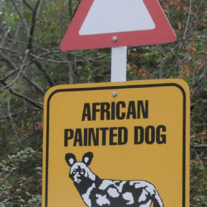 "Some of the signs on display  at  the  ""Painted Dog Encounter"" at the Pittsburgh Zoo and PPG Aquarium."