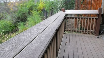 A view of the tilt of railing along the open viewing area  at the  &quot;Painted Dog Encounter&quot; at the Pittsburgh Zoo and PPG Aquarium.