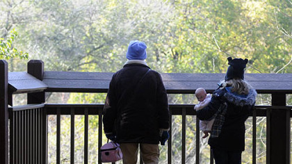 Hope Tinker and her granddaughter Ellie Tinker, 7, stand on an overlook at the Pittsburgh Zoo that is adjacent and identical to where a 2-year boy fell on Sunday.
