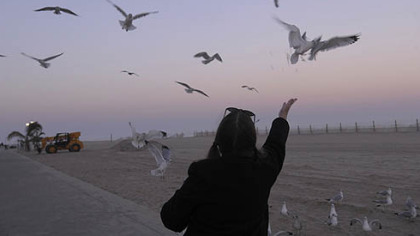 A woman feeds the remains of her Thrasher's french fries to seagulls along the boardwalk in Ocean City, Md., on Sunday.