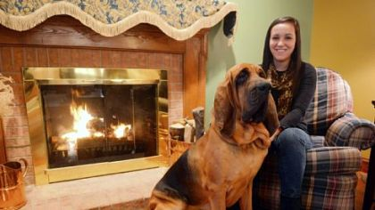 Kara Berestecky of Bethel Park with her bloodhound Otis.