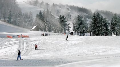 The owners of Wisp, Maryland's only ski resort, have asked a bankruptcy court judge to approve a sale of the property to a unit of EPR Properties, a real-estate investment trust in Kansas City, for $20.5 million. Wisp will hire 350 seasonal staff and prepare to open Nov. 24, weather permitting.