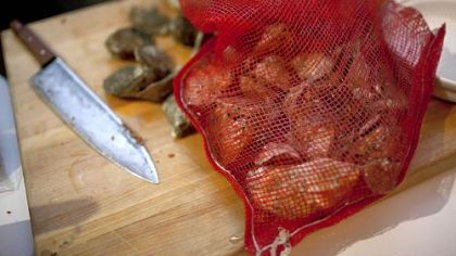A sack of oysters ready to be roasted.