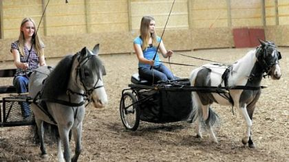 Kristina Taynor, 17, left, with Sweet Dreams and her sister, Michelle, right, with Dottie give horses a workout.