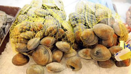 Little neck clams, left, and middle neck clams from Virginia at the Penn Avenue Seafood Co.