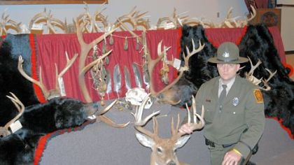 The Game Commission's John Wyant displays recovered animal parts that were sold illegally on the black market or taken from poached animals.