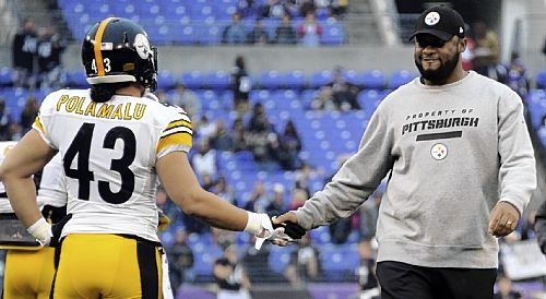 Polamalu says he could have handled calf injury better