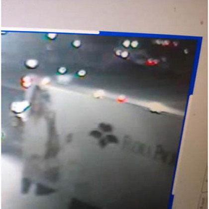 Pittsburgh Police say this vehicle may have been involved in a fatal collision today in the Strip District. Anyone with information is asked to call 412-323-7161. Callers may remain anonymous, police said.