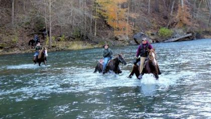 Trout wrangler riders ford the Bluestone River. Farthest rider from camera, on horse on far bank is Edwa Meek. Nearest rider on the far riverbank is Dale Davis. Then, from left, riders in the river are: Preston Snow, Aaron Moyer and guide Anthony Lilly.
